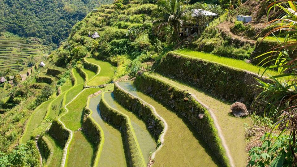 Hoogtepunten van de Filipijnen