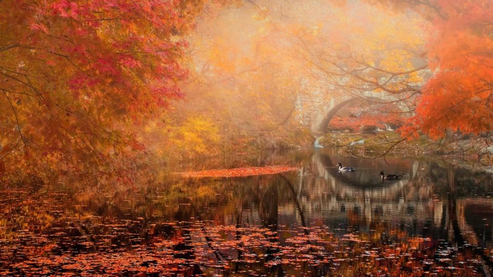 Namaste Reizen: Hoogtepunten van Zuid-Korea